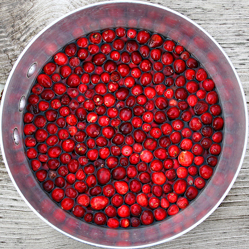 Day 077 – Cranberries Galore!